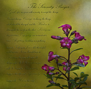 The Serenity Prayer Posters - The Serenity Prayer  Poster by MaryJane Armstrong