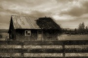 Old House Photographs Digital Art Prints - The Shack Print by Tyra  OBryant