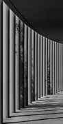Mhs Posters - The Shadows and Pillars  Black and White Poster by Mark Dodd