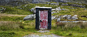 Old Shack Photos - The Shed by Tim Gainey