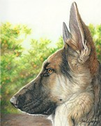 Animal Art Drawings Prints - The Shepherd Watching Print by Joan Garcia