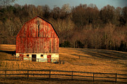 Barns Digital Art Prints - The Simple Life Print by Lois Bryan