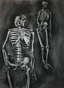 Human Skeleton Drawings - The Skeletons by Ian Oliver