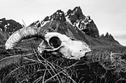 Runolfur Hauksson Photo Prints - The Skull Print by Runolfur Hauksson