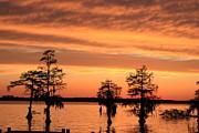 The Sky At Sunset Print by Carolyn Ricks