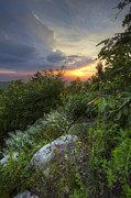 Tn Prints - The Smokies Print by Debra and Dave Vanderlaan