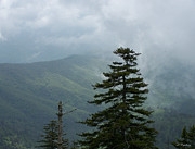 Rderder Photos - The Smokies by Roy Erickson