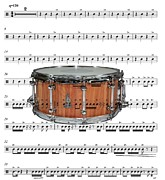 Music Score Digital Art Posters - The Snare Drum Poster by Ron Davidson
