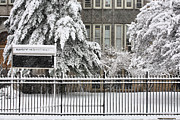 Winter Storm Photos - The Snow Day by JC Findley