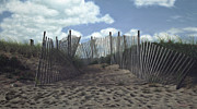 Cape Cod Paintings - The Snow Fence by OMalley Keyes