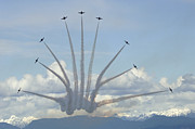 Aerobatics Framed Prints - The Snowbirds In High Gear Framed Print by Bob Christopher