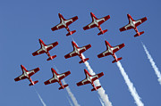 Aerobatics Framed Prints - The Snowbirds Keeping It Tight Framed Print by Bob Christopher