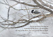 Wintry Digital Art Prints - The Song of the Birds Print by Lori Deiter