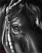 Equine Art Artwork Prints - the Soul of a Horse Print by Jill Westbrook