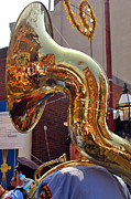 Joann Vitali - The Sousaphone - North...