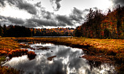 Cary Metal Prints - The South End of Cary Lake Metal Print by David Patterson