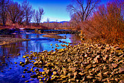 Flood Framed Prints - The South Platte River Framed Print by David Patterson