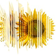 Farming Digital Art - The Spirit Of The Sunflower by Liane Wright