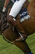 Polo Photos - The Sport Of Kings by Susan Candelario