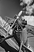 Planes Framed Prints - The Stearman Airplane Framed Print by David Patterson