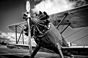 Boeing Metal Prints - The Stearman Biplane Metal Print by David Patterson