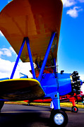 Stearman Photos - The Stearman by David Patterson