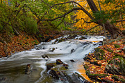 """new England Fall Foliage"" Art - The Still River by Bill  Wakeley"