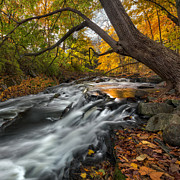 Connecticut Landscape Photos - The Still River Square by Bill  Wakeley