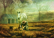 Kelpie Posters - The Stock Horse Poster by Trudi Simmonds