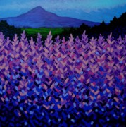Purple Mountains Prints Posters - The Sugar Loaf - Wicklow - Ireland Poster by John  Nolan