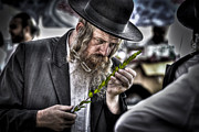 Orthodox Rabbi Prints - the Sukkoth 4 species market Print by Dan Yeger