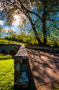Tourism Pastels Prints - The sun shines through trees over Burnside Bridge at Antietam National Battlefield Print by Jon Bilous