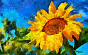 Vincent DiNovici - The Sunflower TNM