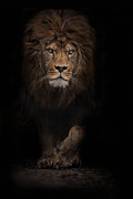 The Survivor Print by Ashley Vincent