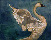 Watercolor  Paintings - The Swan by Douglas Girard