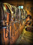 Saddlebred Posters - The Tack Room - Equestrian Poster by Lee Dos Santos