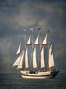 Wooden Ship Posters - The Tall Ship Windy Poster by Dale Kincaid