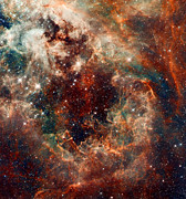 Hubble Prints - The Tarantula Nebula Print by Nicholas Burningham
