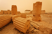Levant Posters - The Temple of Bel Palmyra Syria in the light after a sandstorm Poster by Robert Preston