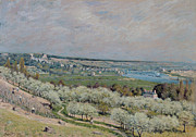 Olive Green Framed Prints - The Terrace at Saint Germain Framed Print by Alfred Sisley