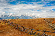 Split Rail Fence Prints - The Tetons Print by Steven Bahrns