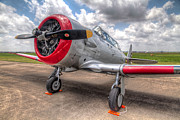 Aviation Metal Prints - The Texan Metal Print by Tim Stanley