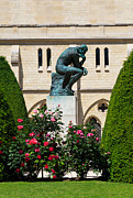 Rose Bushes Posters - The Thinker by Auguste Rodin Poster by Louise Heusinkveld