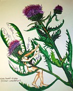 Angels Drawings - The Thistle Fairy by Linda Stoughton