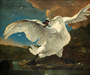 Famous Artists - The Threatened Swan by Jan Asselijn