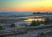Bc Coast Photos - The Tide is Low by Randy Hall