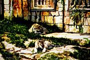 Barry Jones - The Tigers Den