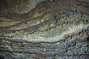 Rock Face Photo Originals - The Toothed Rock by Graham Foulkes