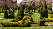Brian Mollenkopf - The Topiary Garden