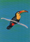 Toucan Paintings - The Toucan by Melissa Vijay Bharwani